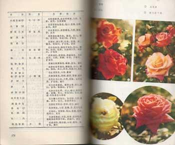 Asie Brochure sur les plantes Texte en chinois