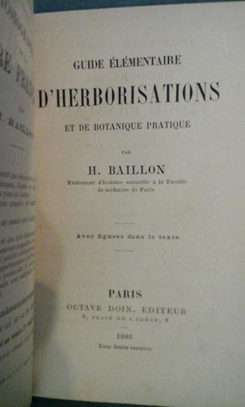 Baillon