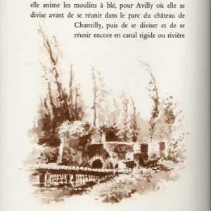 chantilly3.jpg