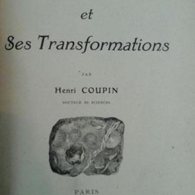 Coupin