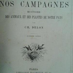 Delon2