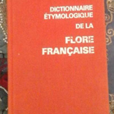 Dictionnaireetymo