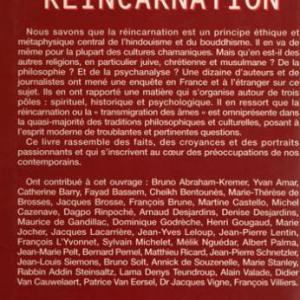 enquete-sur-la-reincarnation-back.jpg