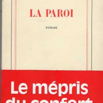 La paroi par Pierre Moustiers