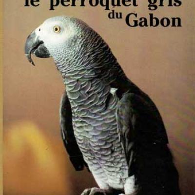 Péron Jean-Luc Le perroquet gris du Gabon Réservé