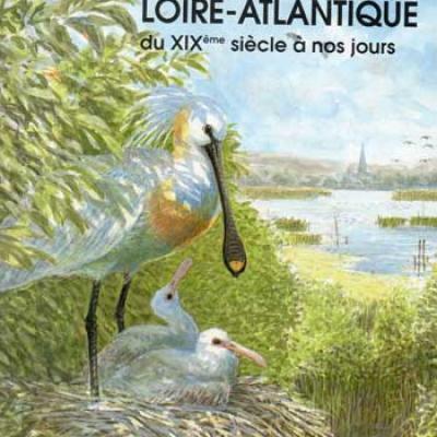 Les oiseaux de Loire-Atlantique du XIXième siècle à nos jours
