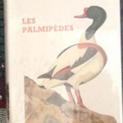 Lespalmipedes1