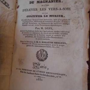 magnanier13.jpg