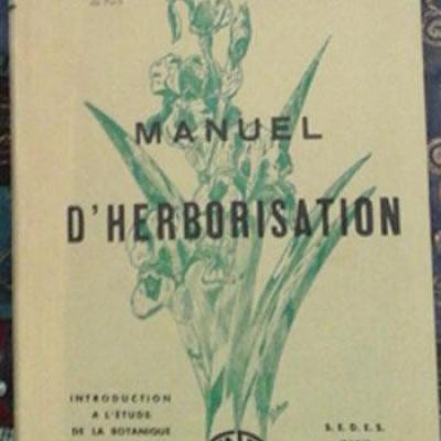 Manueldherbo