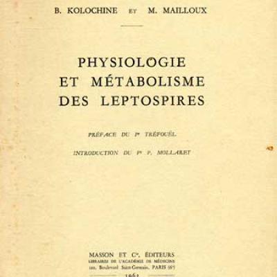 Kolochine B. et Mailloux M. Physiologie et métabolisme des leptospires